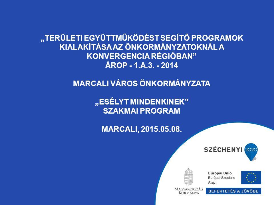 """""""Területi együttműködést segítő programok kialakítása az önkormányzatoknál a konvergencia régióban ÁROP - 1.A.3."""