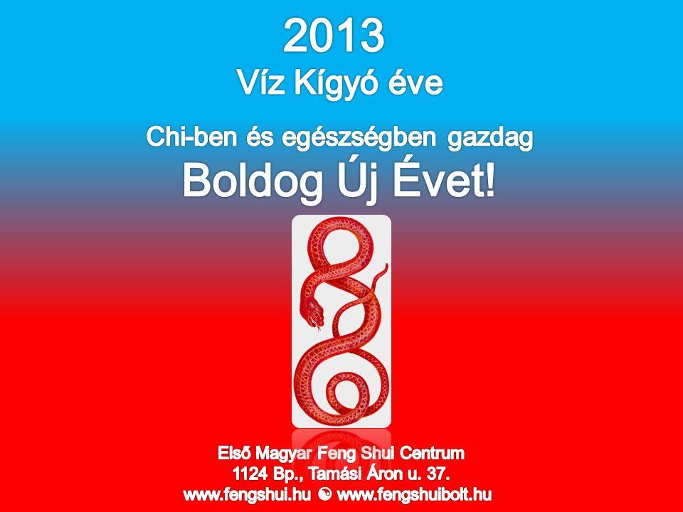2013 Boldog Új Évet! Víz Kígyó éve Chi-ben és egészségben gazdag