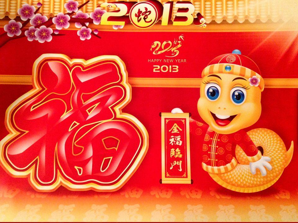 2013 Víz Kígyó éve Szilvásy Judit Okl. mérnök Feng Shui mester