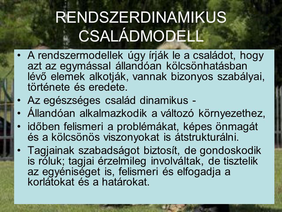 RENDSZERDINAMIKUS CSALÁDMODELL