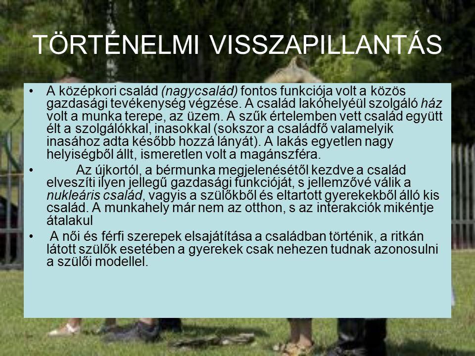 TÖRTÉNELMI VISSZAPILLANTÁS