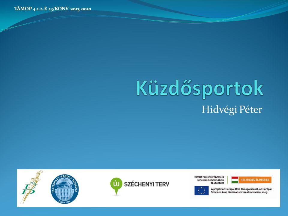 TÁMOP 4.1.2.E-13/KONV-2013-0010 Küzdősportok Hidvégi Péter