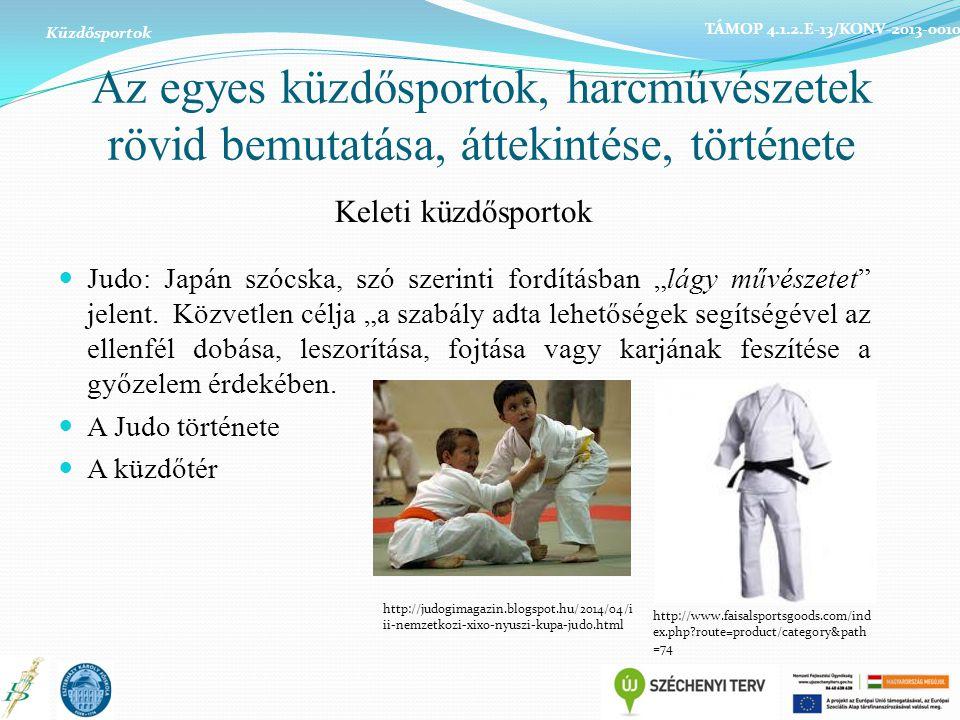 Küzdősportok TÁMOP 4.1.2.E-13/KONV-2013-0010. Az egyes küzdősportok, harcművészetek rövid bemutatása, áttekintése, története.