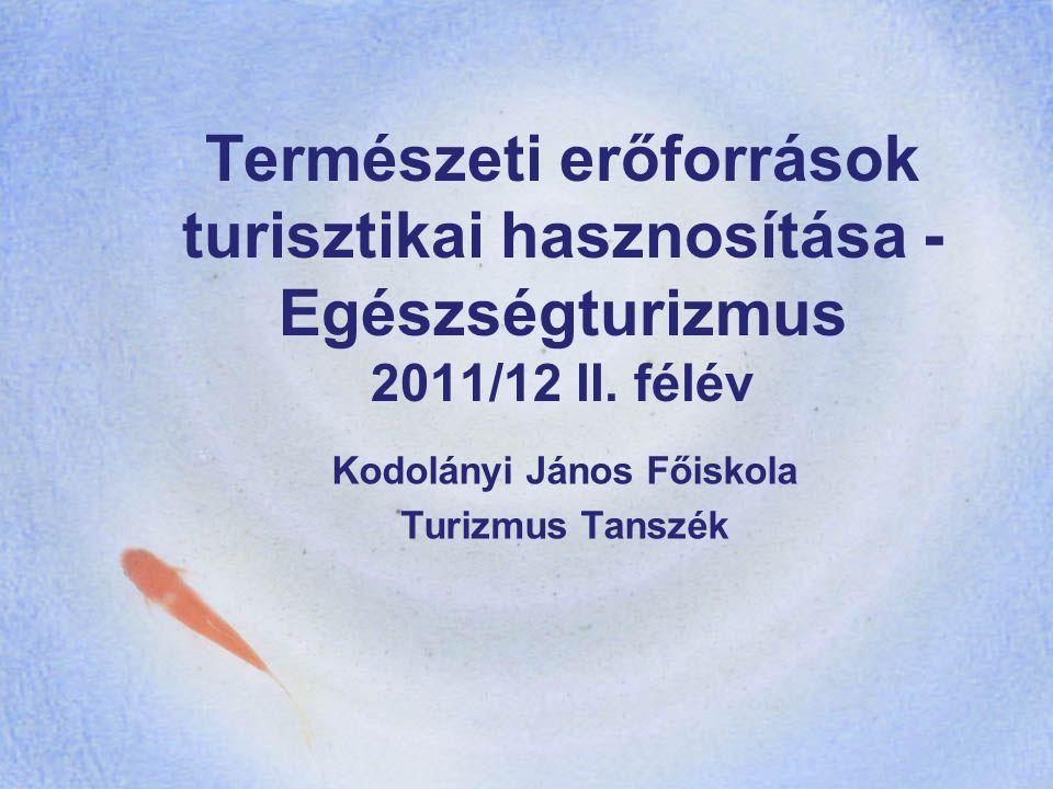 Kodolányi János Főiskola Turizmus Tanszék