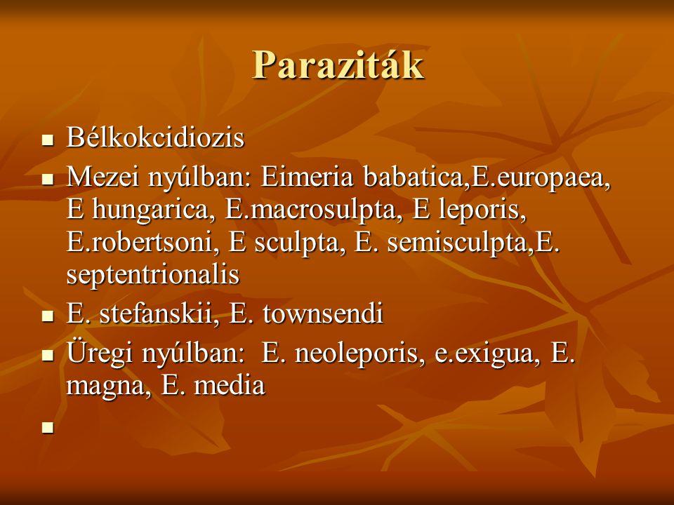 Paraziták Bélkokcidiozis