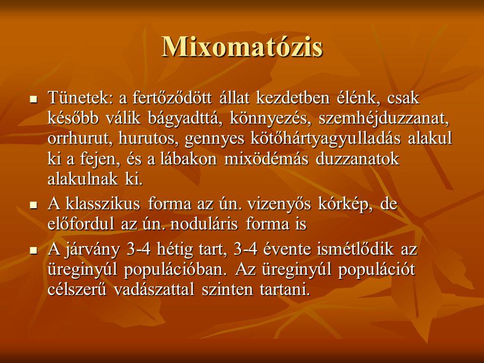 Mixomatózis