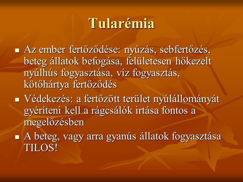 Tularémia