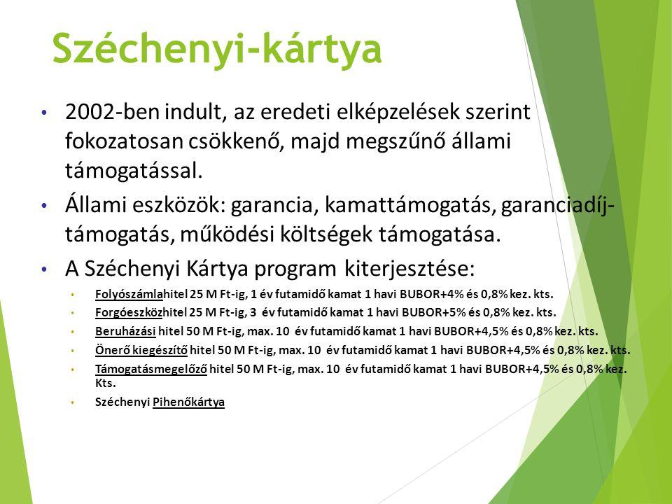 Széchenyi-kártya 2002-ben indult, az eredeti elképzelések szerint fokozatosan csökkenő, majd megszűnő állami támogatással.
