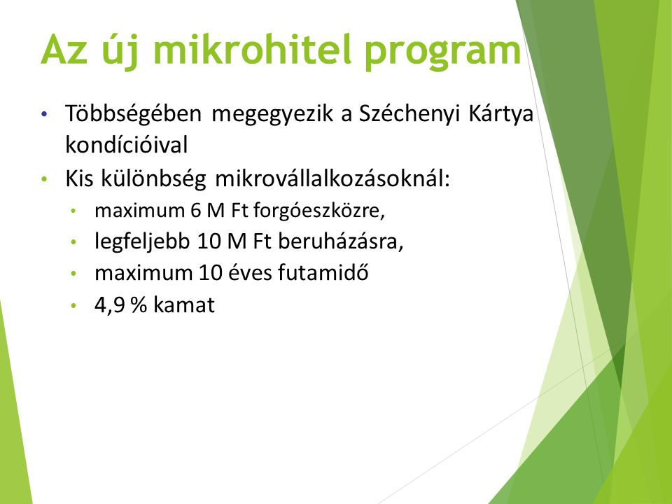 Az új mikrohitel program