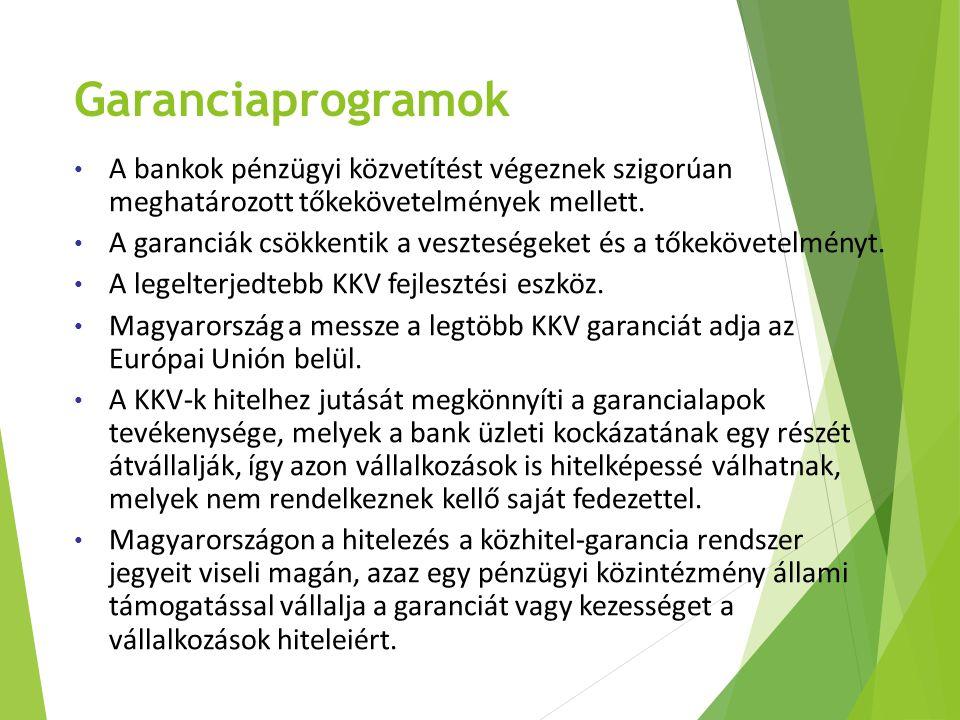 Garanciaprogramok A bankok pénzügyi közvetítést végeznek szigorúan meghatározott tőkekövetelmények mellett.