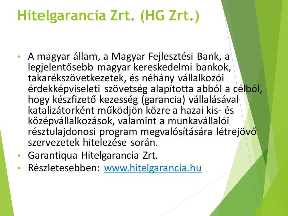 Hitelgarancia Zrt. (HG Zrt.)