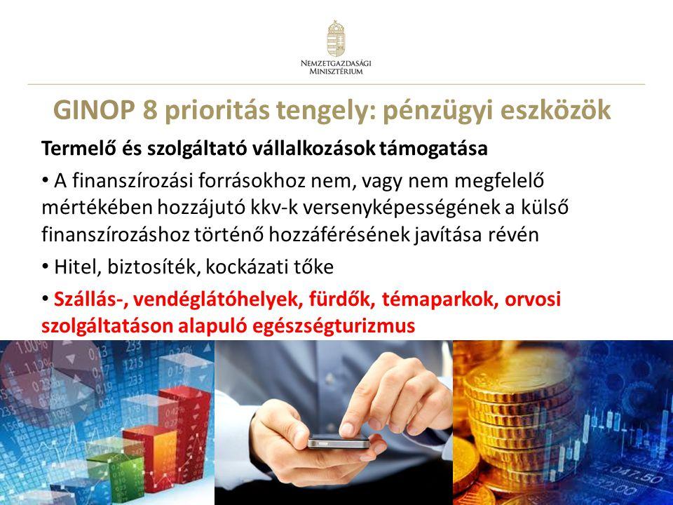 GINOP 8 prioritás tengely: pénzügyi eszközök