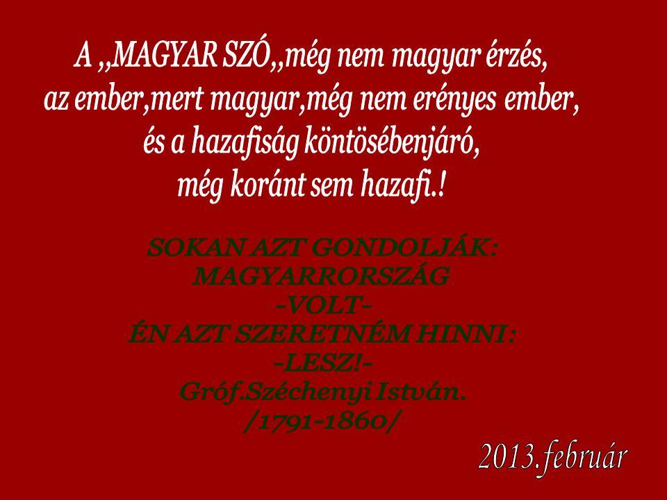 2013.február SOKAN AZT GONDOLJÁK: MAGYARRORSZÁG -VOLT-