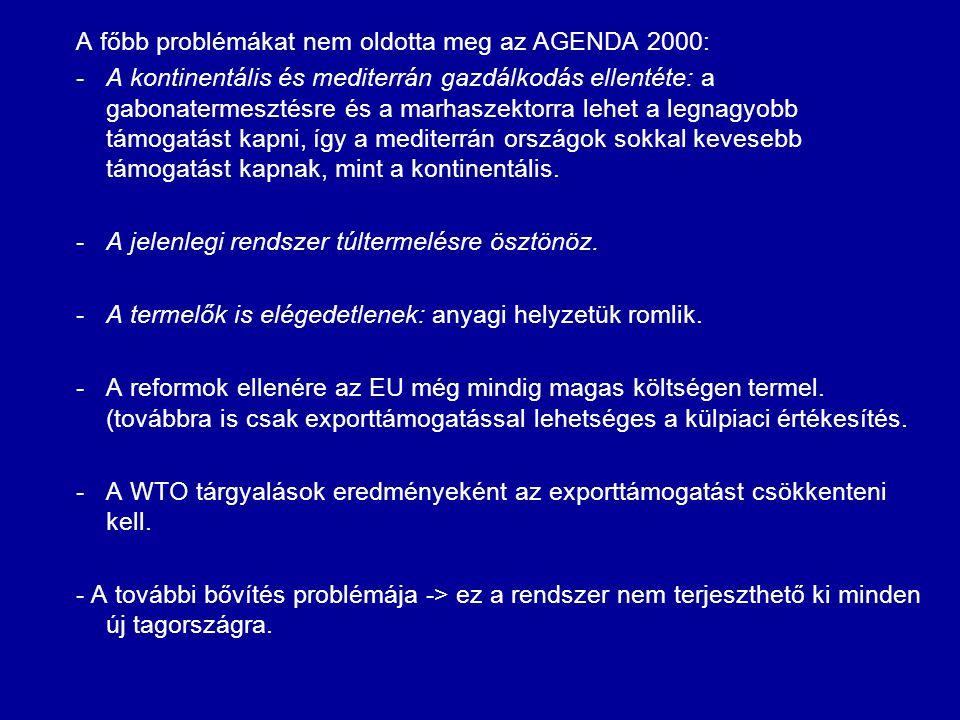 A főbb problémákat nem oldotta meg az AGENDA 2000: