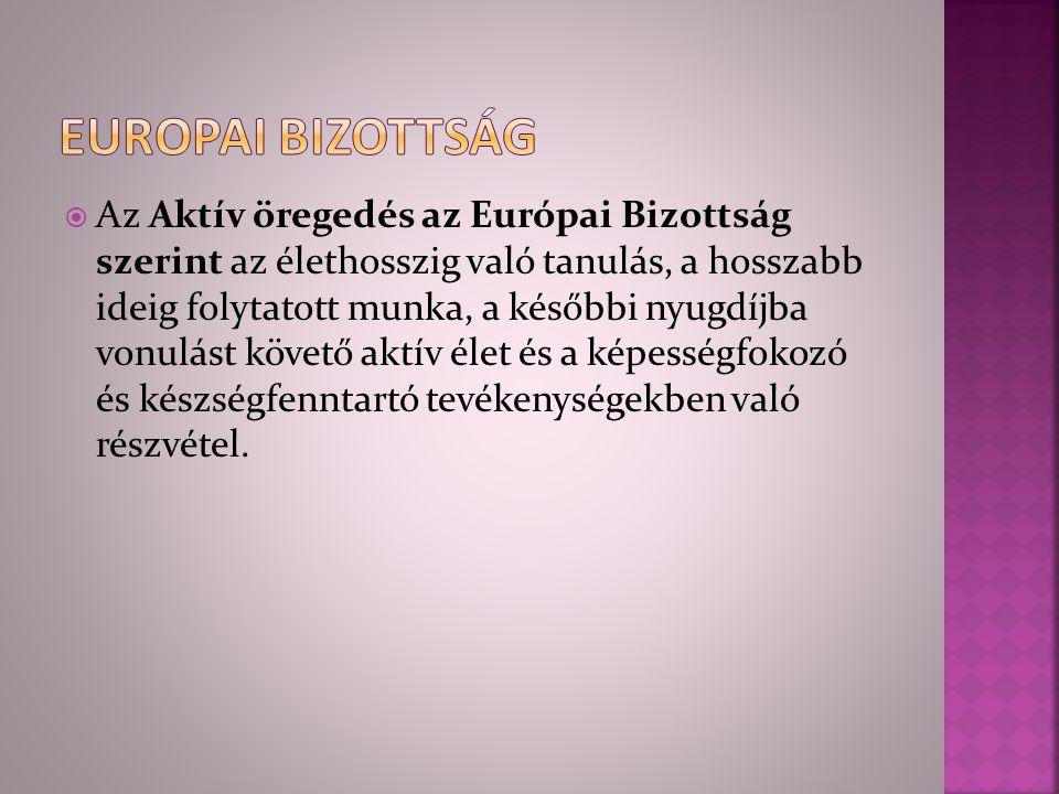 Europai bizottság