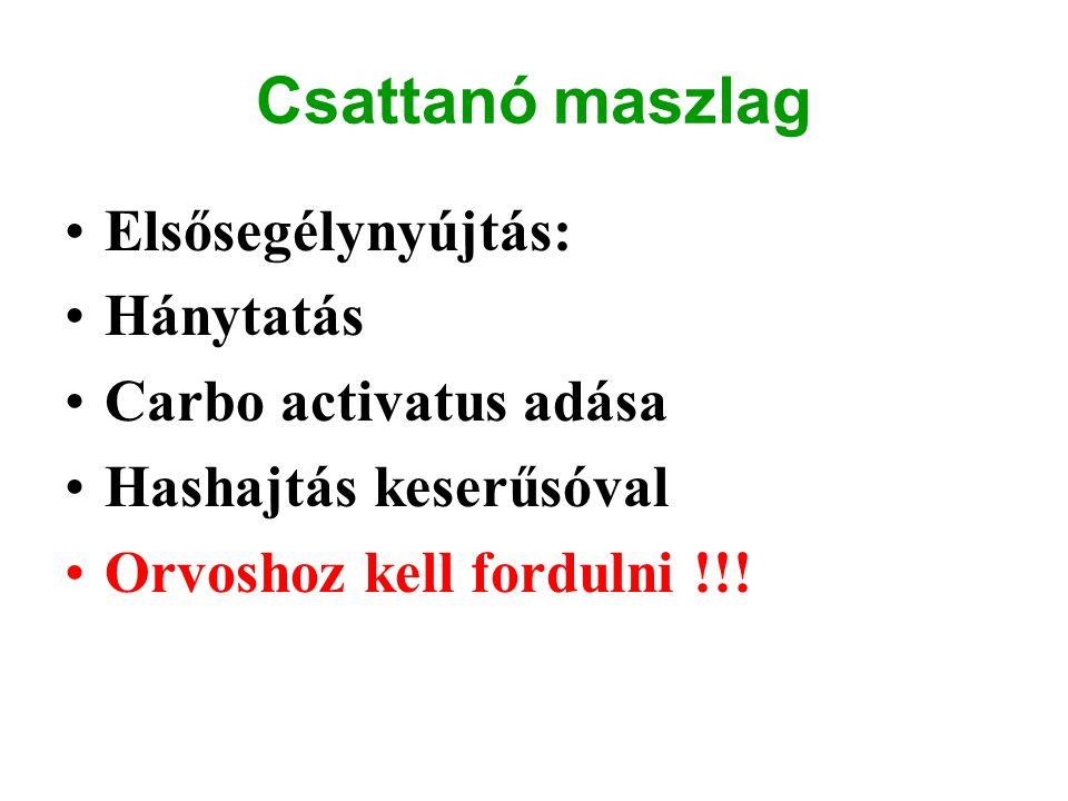 Csattanó maszlag Elsősegélynyújtás: Hánytatás Carbo activatus adása