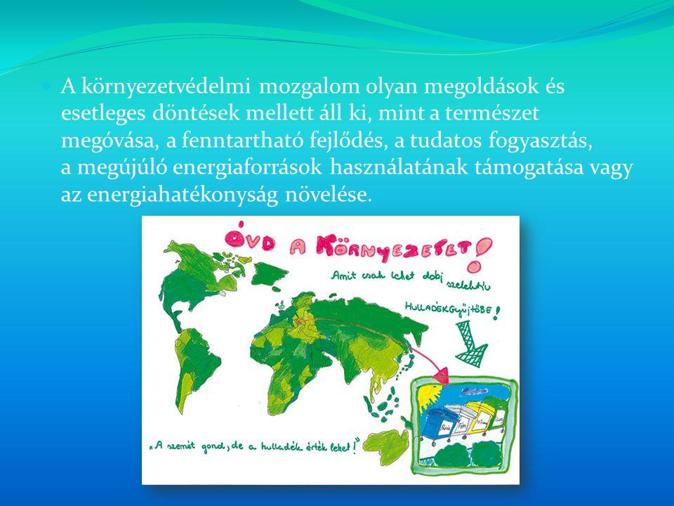 A környezetvédelmi mozgalom olyan megoldások és esetleges döntések mellett áll ki, mint a természet megóvása, a fenntartható fejlődés, a tudatos fogyasztás, a megújúló energiaforrások használatának támogatása vagy az energiahatékonyság növelése.