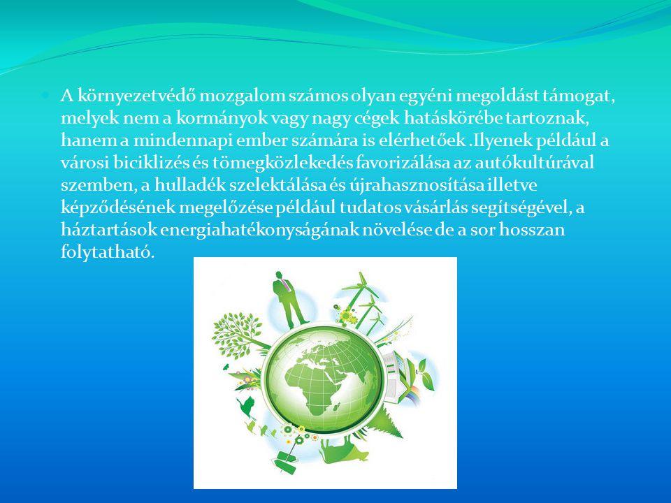 A környezetvédő mozgalom számos olyan egyéni megoldást támogat, melyek nem a kormányok vagy nagy cégek hatáskörébe tartoznak, hanem a mindennapi ember számára is elérhetőek .Ilyenek például a városi biciklizés és tömegközlekedés favorizálása az autókultúrával szemben, a hulladék szelektálása és újrahasznosítása illetve képződésének megelőzése például tudatos vásárlás segítségével, a háztartások energiahatékonyságának növelése de a sor hosszan folytatható.