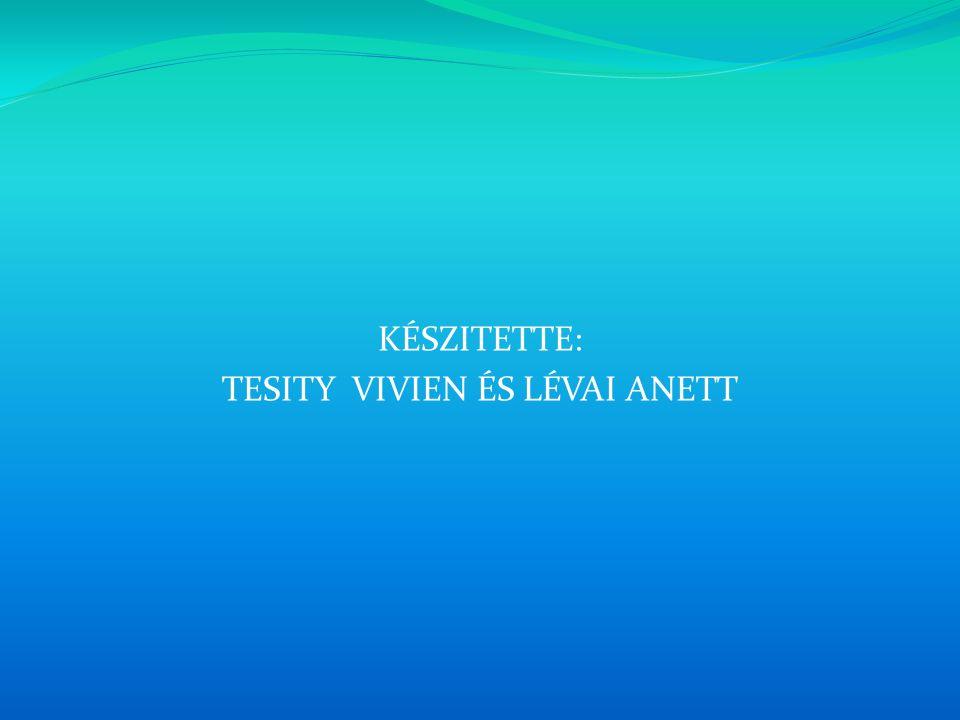 TESITY VIVIEN ÉS LÉVAI ANETT