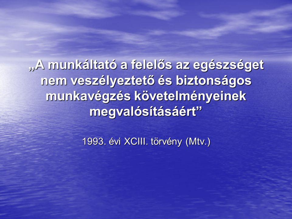1993. évi XCIII. törvény (Mtv.)