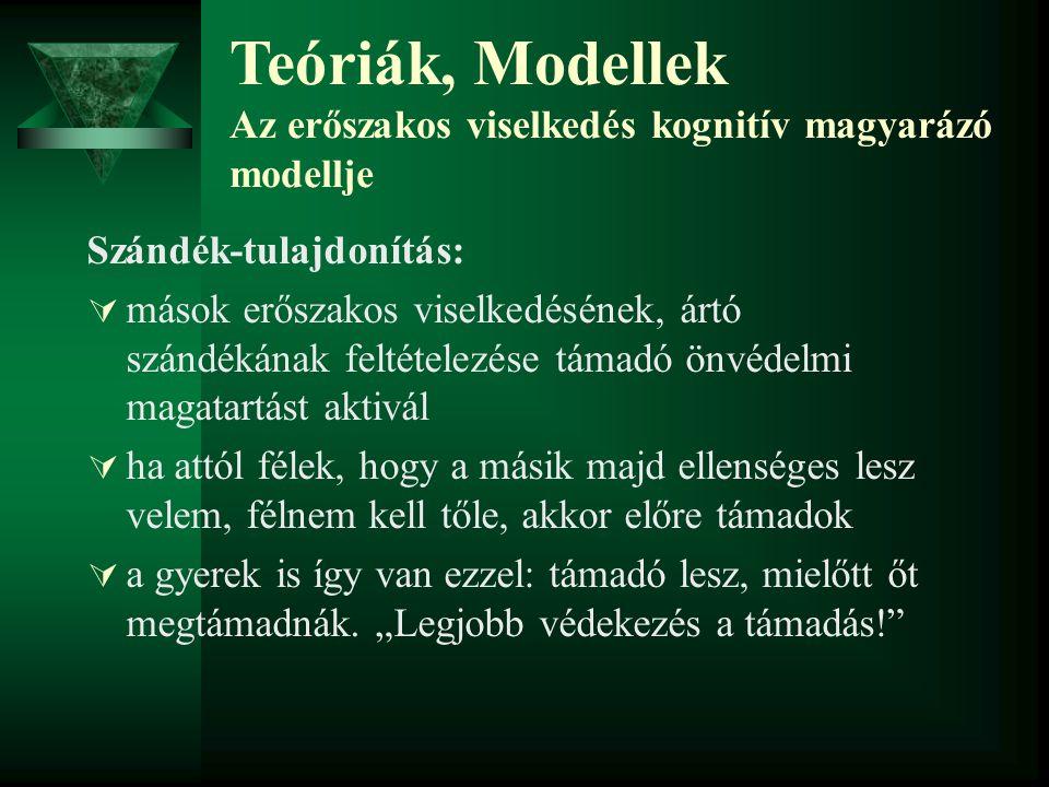 Teóriák, Modellek Az erőszakos viselkedés kognitív magyarázó modellje