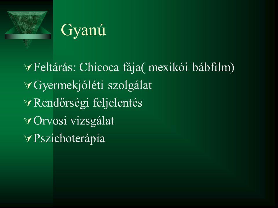 Gyanú Feltárás: Chicoca fája( mexikói bábfilm) Gyermekjóléti szolgálat