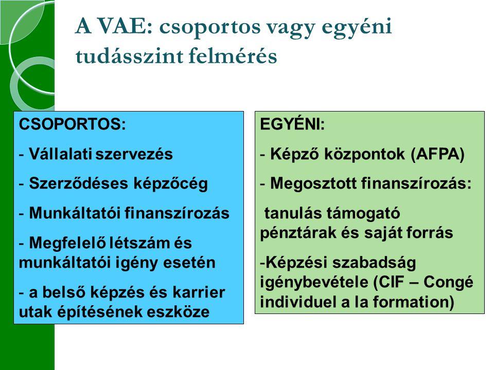 A VAE: csoportos vagy egyéni tudásszint felmérés
