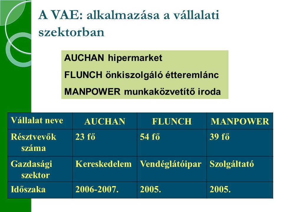 A VAE: alkalmazása a vállalati szektorban