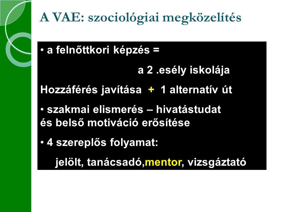 A VAE: szociológiai megközelítés