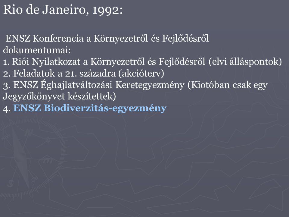 Rio de Janeiro, 1992: ENSZ Konferencia a Környezetről és Fejlődésről