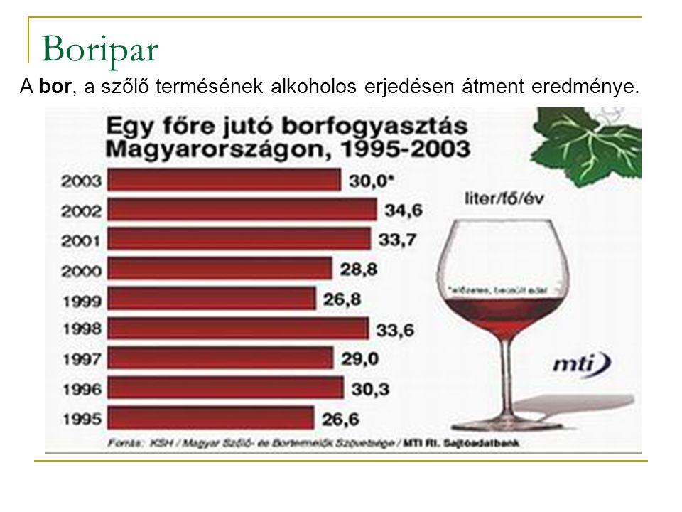 Boripar A bor, a szőlő termésének alkoholos erjedésen átment eredménye.
