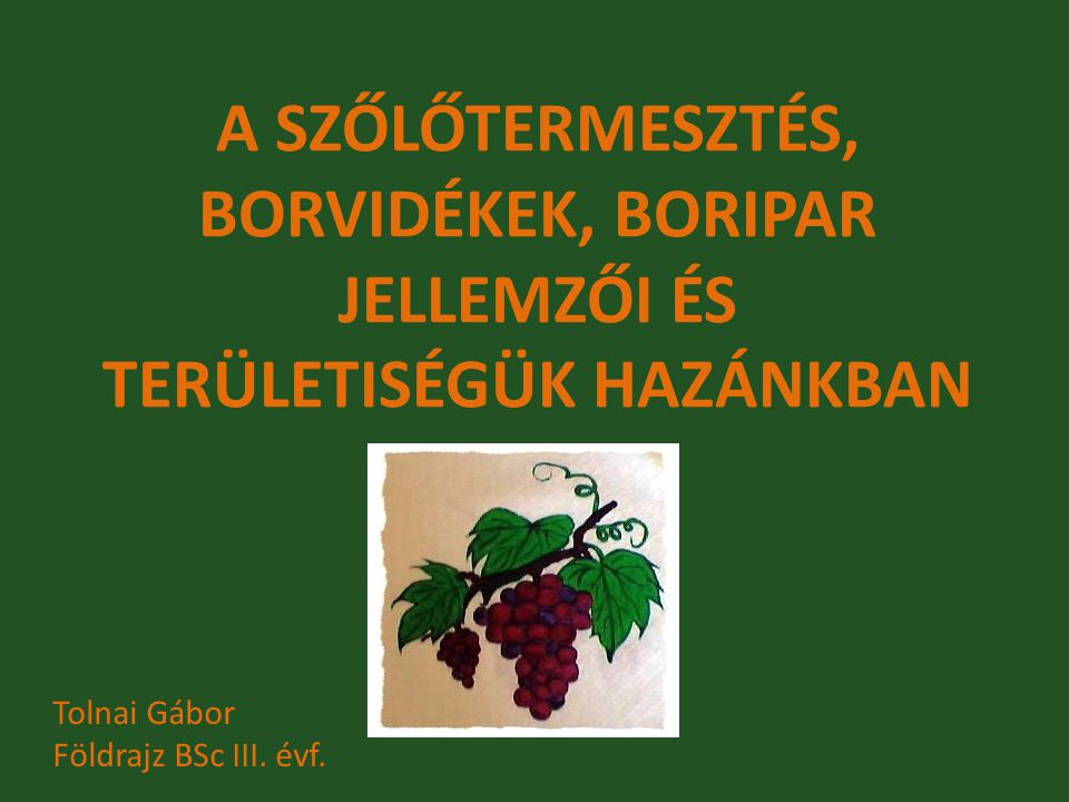 A szőlőtermesztés, borvidékek, boripar jellemzői és területiségük hazánkban