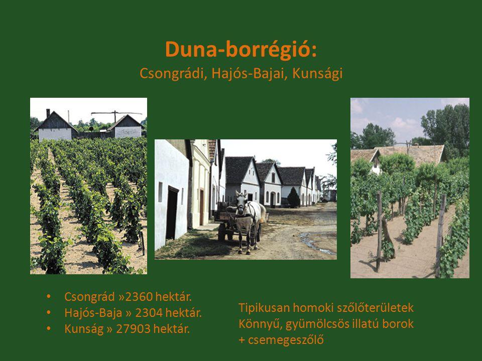 Duna-borrégió: Csongrádi, Hajós-Bajai, Kunsági