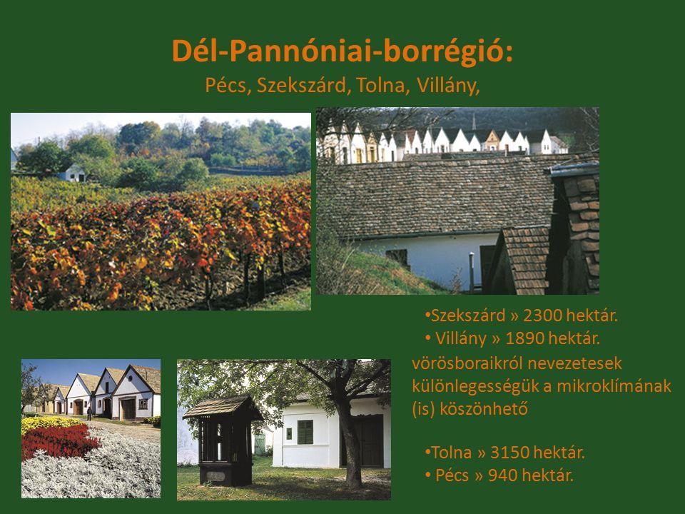Dél-Pannóniai-borrégió: Pécs, Szekszárd, Tolna, Villány,