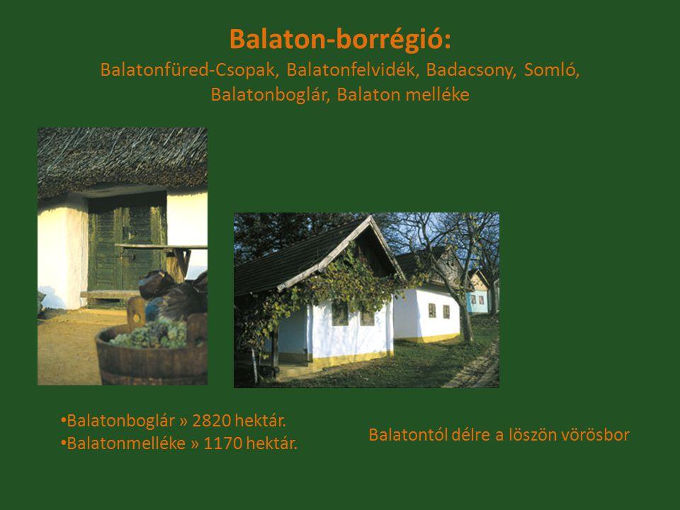 Balaton-borrégió: Balatonfüred-Csopak, Balatonfelvidék, Badacsony, Somló, Balatonboglár, Balaton melléke