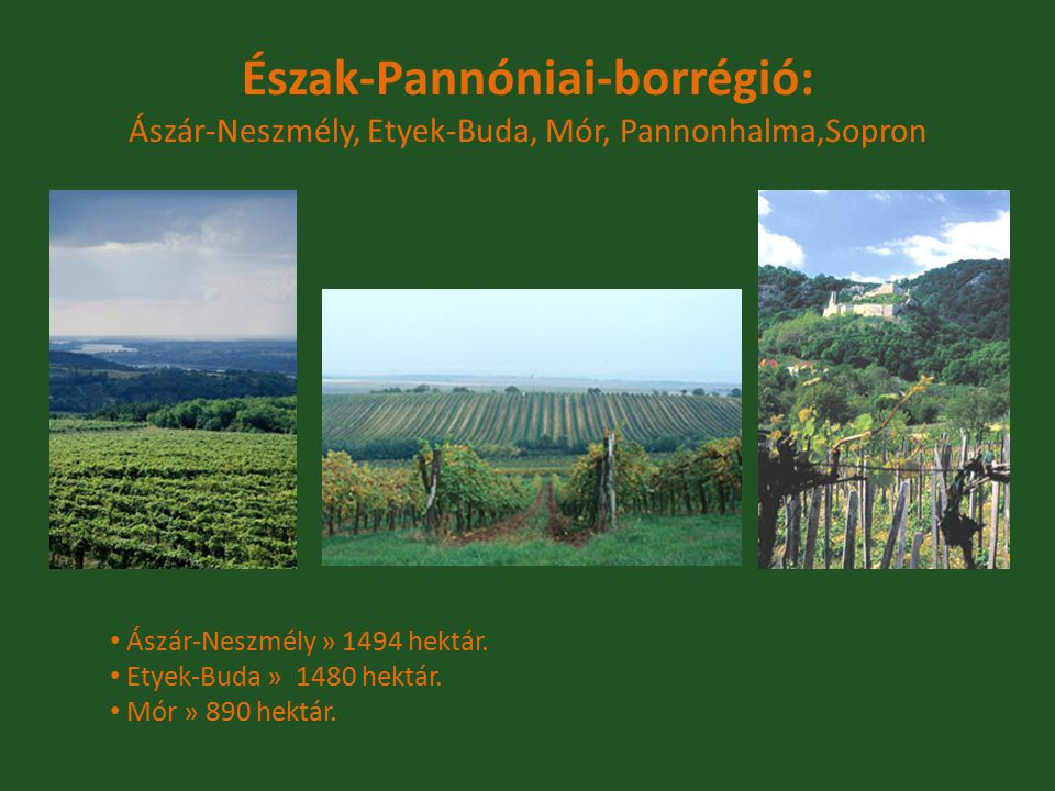 Észak-Pannóniai-borrégió: Ászár-Neszmély, Etyek-Buda, Mór, Pannonhalma,Sopron