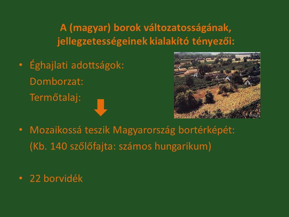 A (magyar) borok változatosságának, jellegzetességeinek kialakító tényezői: