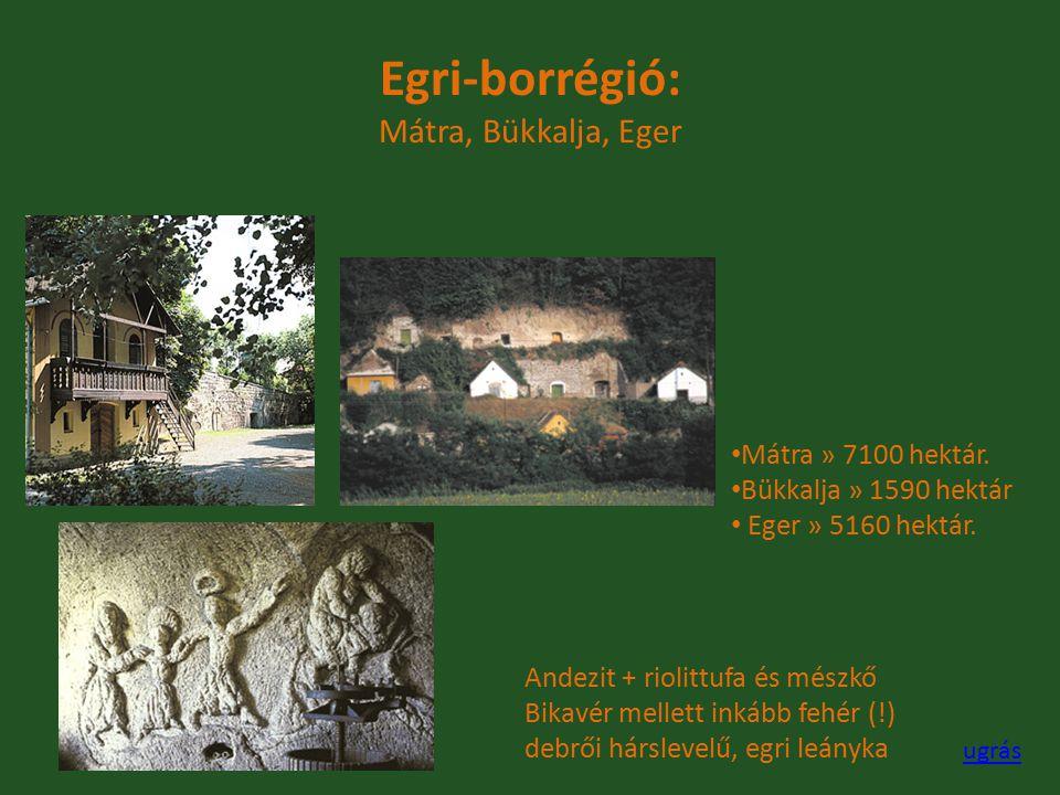 Egri-borrégió: Mátra, Bükkalja, Eger