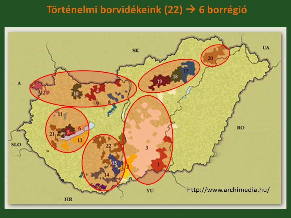Történelmi borvidékeink (22)  6 borrégió