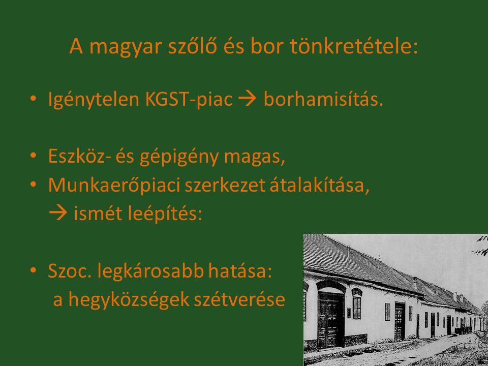 A magyar szőlő és bor tönkretétele: