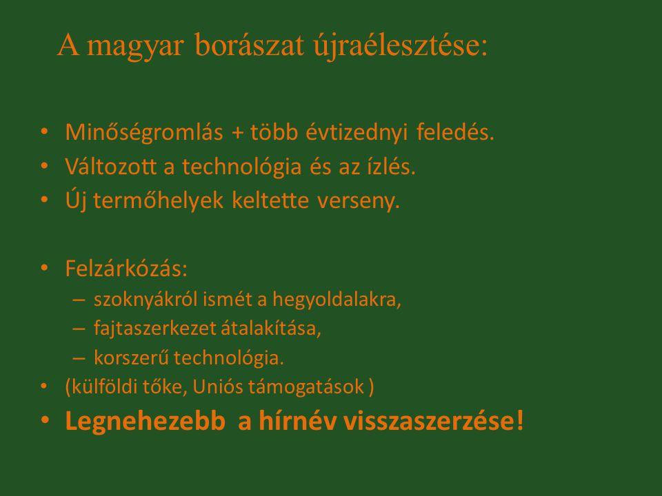 A magyar borászat újraélesztése: