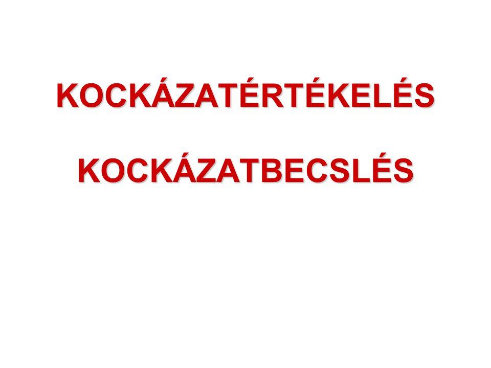 KOCKÁZATÉRTÉKELÉS KOCKÁZATBECSLÉS