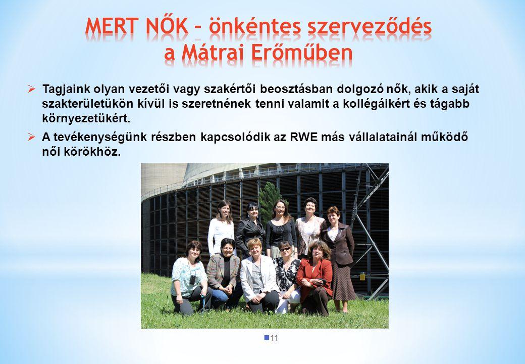 MERT NŐK – önkéntes szerveződés a Mátrai Erőműben