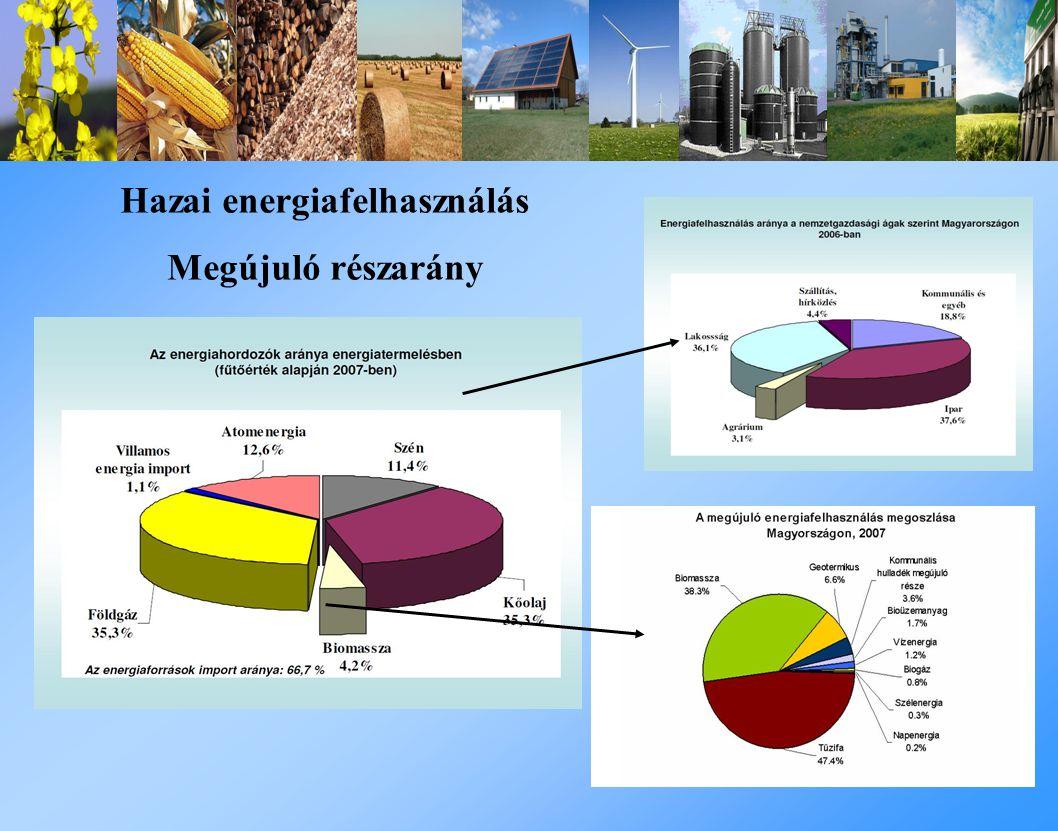 Hazai energiafelhasználás