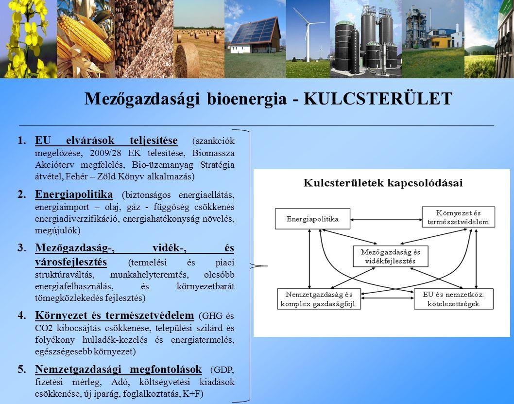 Mezőgazdasági bioenergia - KULCSTERÜLET