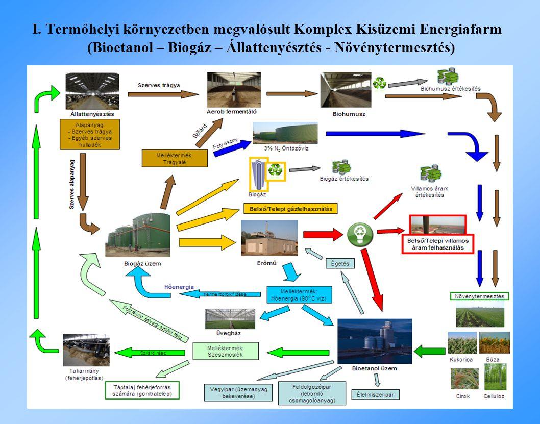 I. Termőhelyi környezetben megvalósult Komplex Kisüzemi Energiafarm