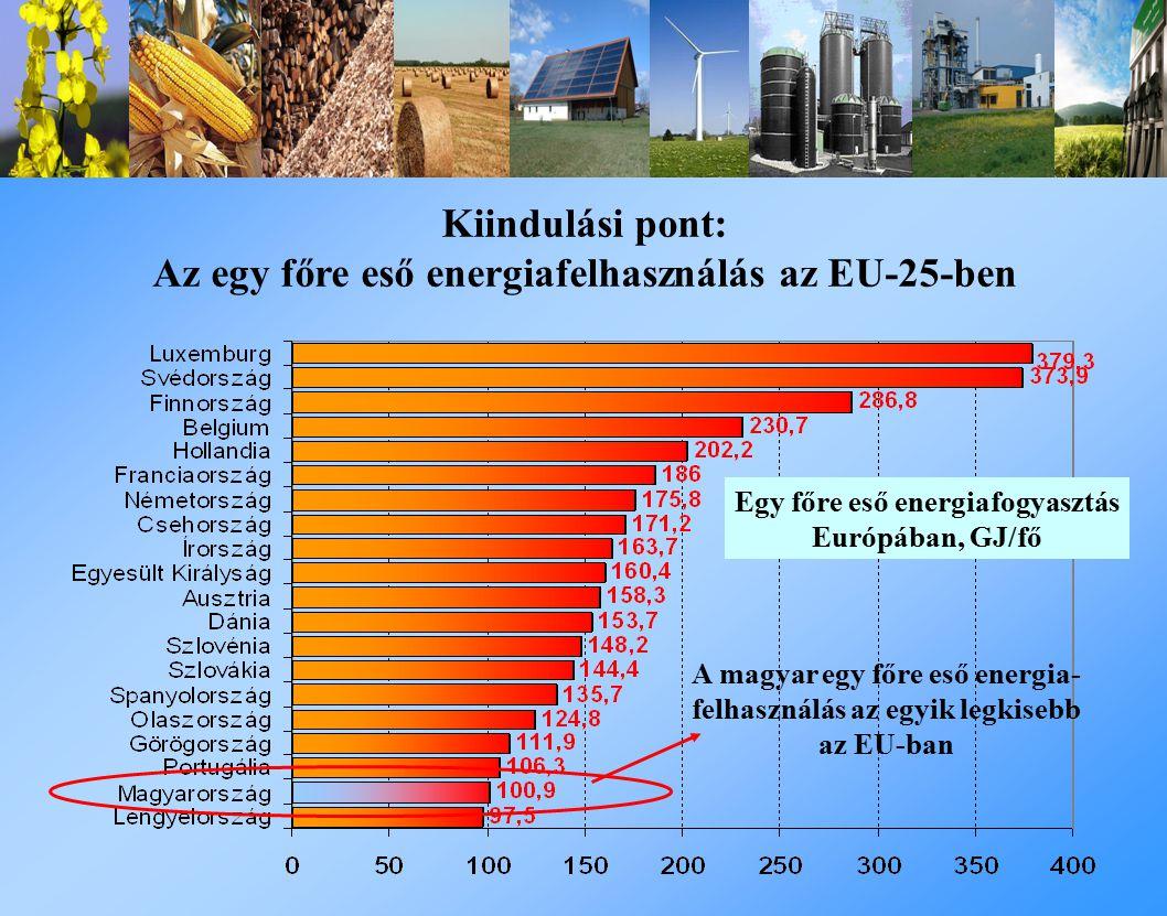 Kiindulási pont: Az egy főre eső energiafelhasználás az EU-25-ben