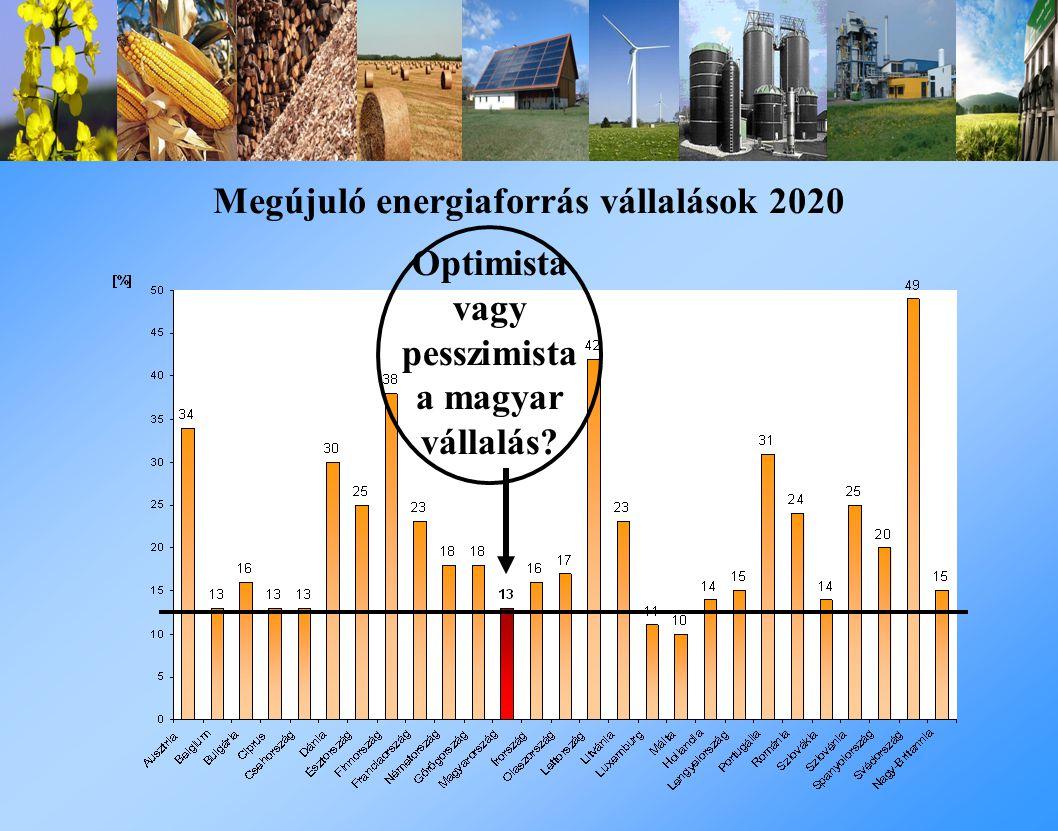 Megújuló energiaforrás vállalások 2020