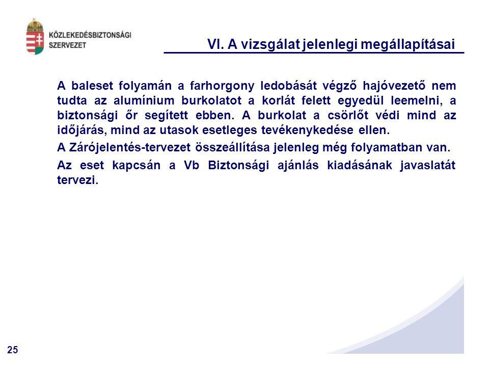 VI. A vizsgálat jelenlegi megállapításai