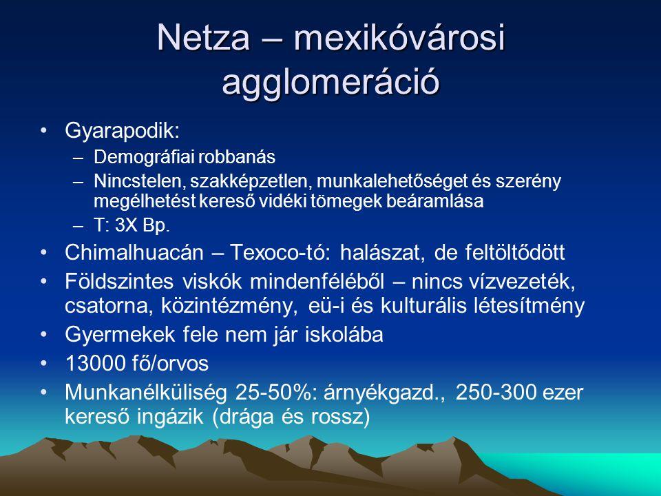 Netza – mexikóvárosi agglomeráció